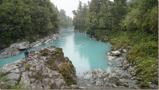 NZL00994