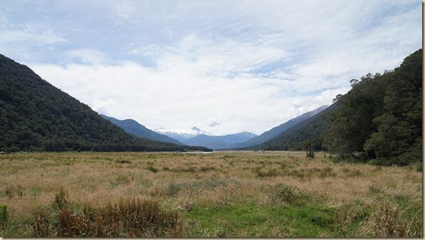 NZL01045