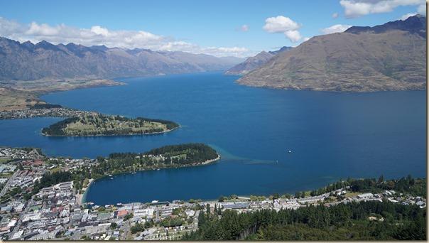 NZL01226