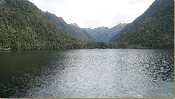 NZL01484