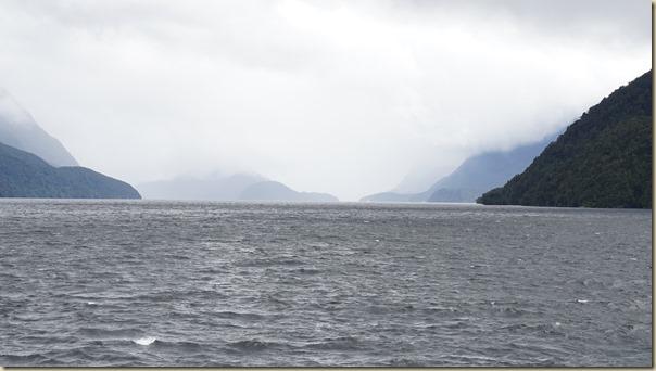 NZL01500