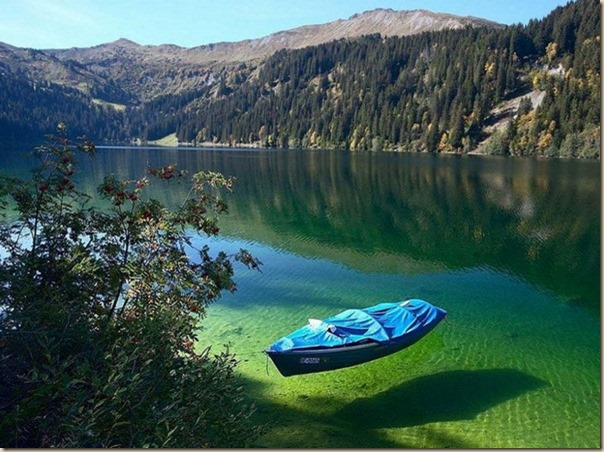 Nelson-Lake